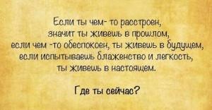 -BMFAccleBs