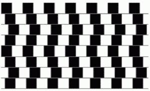 Иллюзия, шахматная доска
